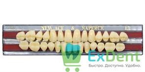 Гарнитур акриловых зубов A3, T2 Gloria New Ace (28 шт)