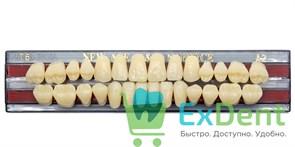 Гарнитур акриловых зубов A2, T6 Gloria New Ace (28 шт)