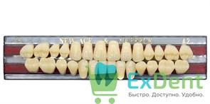 Гарнитур акриловых зубов A2, T5 Gloria New Ace (28 шт)