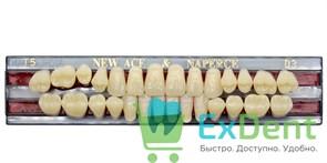 Гарнитур акриловых зубов D3, T5 Gloria New Ace (28 шт)