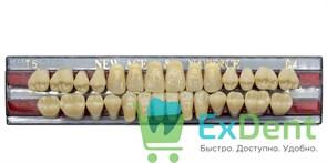 Гарнитур акриловых зубов C4, T5 Gloria New Ace (28 шт)