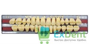Гарнитур акриловых зубов B4, T3 Gloria New Ace (28 шт)