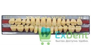 Гарнитур акриловых зубов A4, T5 Gloria New Ace (28 шт)
