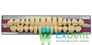 Гарнитур акриловых зубов A4, T6 Gloria New Ace (28 шт)