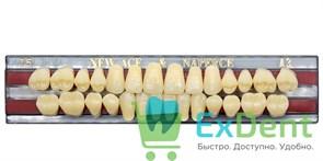 Гарнитур акриловых зубов A3, T5 Gloria New Ace (28 шт)