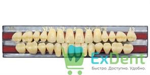Гарнитур акриловых зубов A3, T6 Gloria New Ace (28 шт)