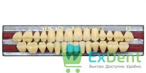Гарнитур акриловых зубов A3, S5 Gloria New Ace (28 шт)