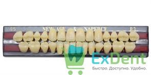Гарнитур акриловых зубов B3, S5 Gloria New Ace (28 шт)