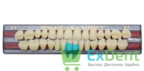 Гарнитур акриловых зубов B2, S4 Gloria New Ace (28 шт)