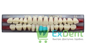 Гарнитур акриловых зубов C1, T6 Gloria New Ace (28 шт)