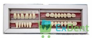 Гарнитур акриловых зубов А1 1/37H-0/5D 1/62H-1/62D - Spofadental Plus, трехслойные (28 шт)