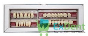 Гарнитур акриловых зубов А2 1/37H-0/5D 1/62H-1/62D - Spofadental Plus, трехслойные (28 шт)
