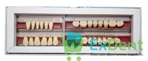 Гарнитур акриловых зубов А2 1/48H-0/6D 1/72H-1/72D - Spofadental Plus, трехслойные (28 шт)
