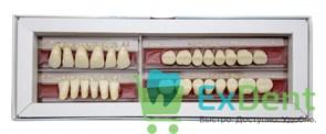 Гарнитур акриловых зубов А1 1/40H-0/7D 1/62H-1/62D - Spofadental Plus, трехслойные (28 шт)