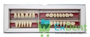 Гарнитур акриловых зубов А3 1/48H-0/6D 1/72H-1/72D - Spofadental Plus, трехслойные (28 шт)