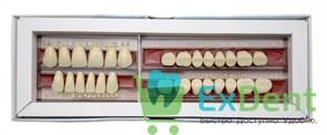 Гарнитур акриловых зубов А2 62H-0/11D 1/62H-1/62D - Spofadental Plus, трехслойные (28 шт)