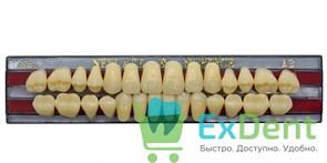 Гарнитур акриловых зубов A3, S6 Gloria New Ace (28 шт)