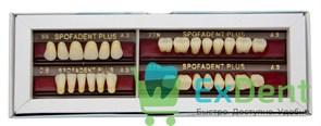 Гарнитур акриловых зубов А3 59-0/8-77N - Spofadental Plus, трехслойные (28 шт)