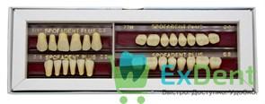 Гарнитур акриловых зубов C2 1/17-0/6-77 - Spofadental Plus, трехслойные (28 шт)