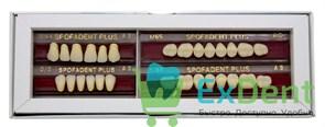 Гарнитур акриловых зубов А3 1/44-0/0-1/65 - Spofadental Plus, трехслойные (28 шт)