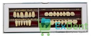 Гарнитур акриловых зубов А3 1/37H-0/5D 1/62H-1/62D - Spofadental Plus, трехслойные (28 шт)