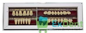 Гарнитур акриловых зубов C2 1/48-0/6-1/72 - Spofadental Plus, трехслойные (28 шт)
