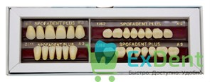 Гарнитур акриловых зубов А3 62H-0/11D 1/62H-1/62D - Spofadental Plus, трехслойные (28 шт)