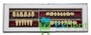 Гарнитур акриловых зубов C2 1/47-0/6-1/72 - Spofadental Plus, трехслойные (28 шт)