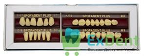 Гарнитур акриловых зубов В3 1/47-0/6-1/72 - Spofadental Plus, трехслойные (28 шт)