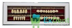 Гарнитур акриловых зубов А3 1/21-0/2-1/60 - Spofadental Plus, трехслойные (28 шт)