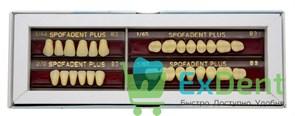 Гарнитур акриловых зубов В3 1/44-0/0-1/65 - Spofadental Plus, трехслойные (28 шт)