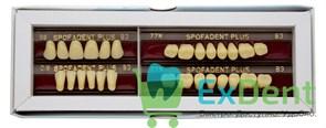 Гарнитур акриловых зубов В3 59-0/8-77N - Spofadental Plus, трехслойные (28 шт)