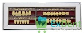 Гарнитур акриловых зубов В3 1/22-0/0-1/72 - Spofadental Plus, трехслойные (28 шт)