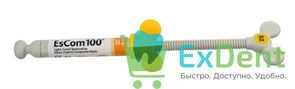 EsCom (Еском) 100 B2 - наногибридный пломбировочный материал (4 г)