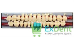 Гарнитур акриловых зубов A3, TL4 Gloria New Ace (28 шт)