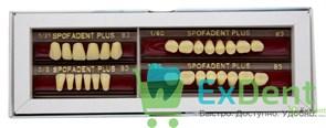 Гарнитур акриловых зубов В3 1/21-0/2-1/6 - Spofadental Plus, трехслойные (28 шт)