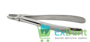 Щипцы №1 для центральнцых зубов и клыков верхней челюсти (BD700/1)