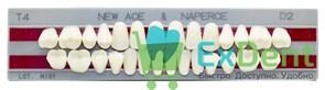 Гарнитур акриловых зубов D2, T4 Gloria New Ace (28 шт)
