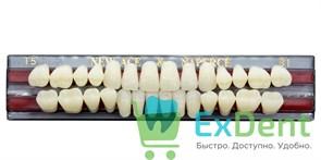 Гарнитур акриловых зубов B1, T5 Gloria New Ace (28 шт)