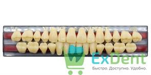 Гарнитур акриловых зубов A3,5, TL6 Gloria New Ace (28 шт)