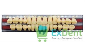 Гарнитур акриловых зубов A3,5, T6 Gloria New Ace (28 шт)