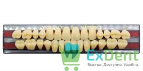 Гарнитур акриловых зубов A3,5, T5 Gloria New Ace (28 шт)