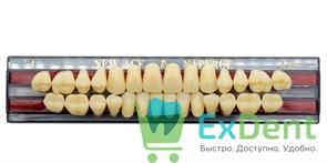 Гарнитур акриловых зубов A3,5, T4 Gloria New Ace (28 шт)