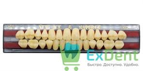 Гарнитур акриловых зубов A3,5, S3 Gloria New Ace (28 шт)