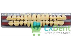 Гарнитур акриловых зубов A3,5, S5 Gloria New Ace (28 шт)