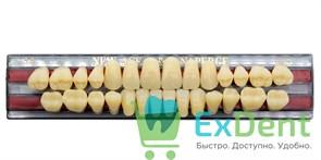 Гарнитур акриловых зубов A3,5, S6 Gloria New Ace (28 шт)