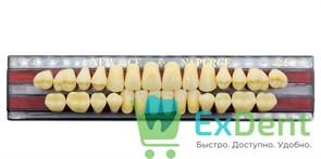 Гарнитур акриловых зубов B4, T4 Gloria New Ace (28 шт)