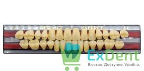 Гарнитур акриловых зубов A4, T4 Gloria New Ace (28 шт)