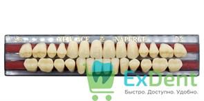 Гарнитур акриловых зубов D3, S5 Gloria New Ace (28 шт)