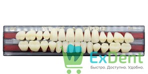 Гарнитур акриловых зубов B1, S4 Gloria New Ace (28 шт)